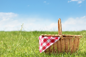 Picnic Outside on a Sunny Day